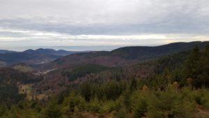 Rene Stareczek - Ausflug in die Berge