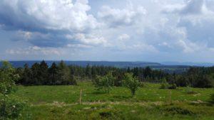rene stareczek 2 - landschaft